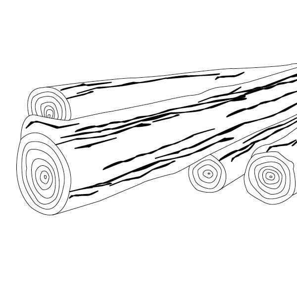 Belcolor Swissfloors® – Ausführlicher Bildband über hochwertigen Parkett. Idee. Konzeption. Logo. Gestaltung. Bildbearbeitung. Umsetzung. Corporate Design. Buch. Inklusiver chinesischer Kurzversion.